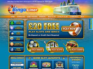 Bingo Liner website