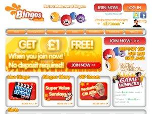 Bingos website