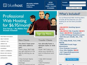 Blue Host website