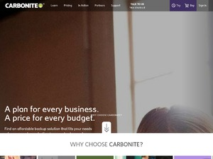 Carbonite website