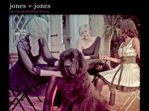 Jones and Jones website