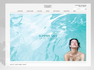 TOAST website